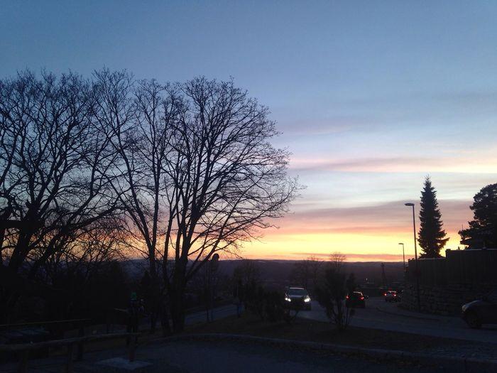 Taking Photos sunset