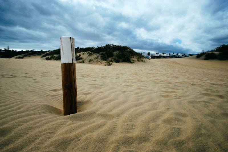 Dune Sand Land