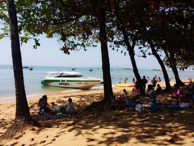 Sunday👌 Sea Beach Nature Large Group Of People Shore Scenics Beauty In Nature Lifestyles Sand Relaxation Horizon Over Water Tree Women Tranquil Scene Outdoors Leisure Activity Camping Vacations Real People