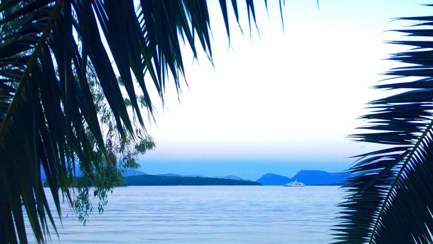 Water Sea Scenics Tranquil Scene Tranquility Beauty In Nature Mountain Waterfront Nature Blue Calm Sky Ocean Seascape Remote Outdoors Palm Leaf Day Coastline Mountain Range