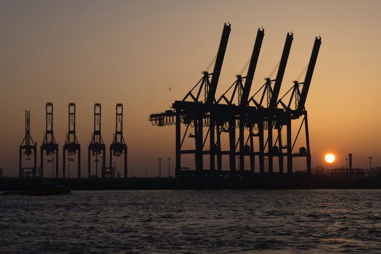 Silhouette cranes at sea against sky during sunset