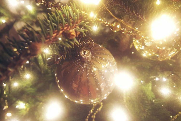 Christmas Christmas Decoration Christmas Tree Christmas Lights Close-up Illuminated Holiday - Event Christmas Ornament Mychristmastree Celebration