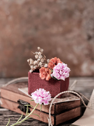 Close-up of pink flowering plant on table