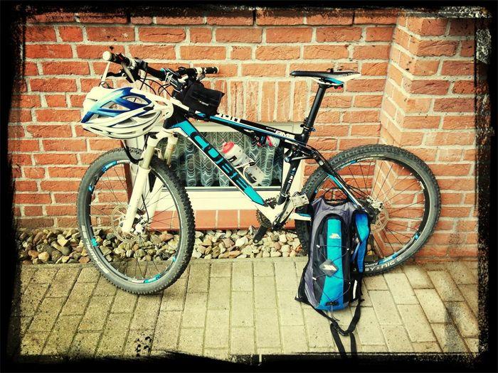 Mountain Biking Diekholzen KSM KSM Biking Forrest