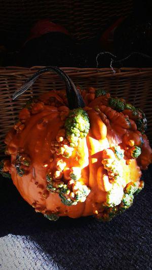 Pumpkins Food