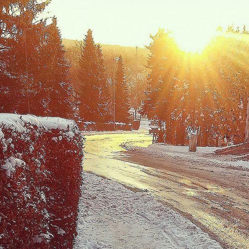 Gutenmorgenremscheid 😍❄☀ Winterwonderland Eiskaltundsonnig Traumhaft sokannderwinterbleiben winterspaziergangmitbrudi werbrauchtdanochskiurlaub ❄❄⛄⛄💞