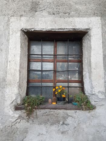 Details Textures And Shapes Old Window Old Details Window Architecture Built Structure Building Exterior Day Door Flower No People Outdoors Window Box