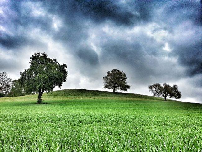 La colina... Streamzoofamily Europe My Edit Nature