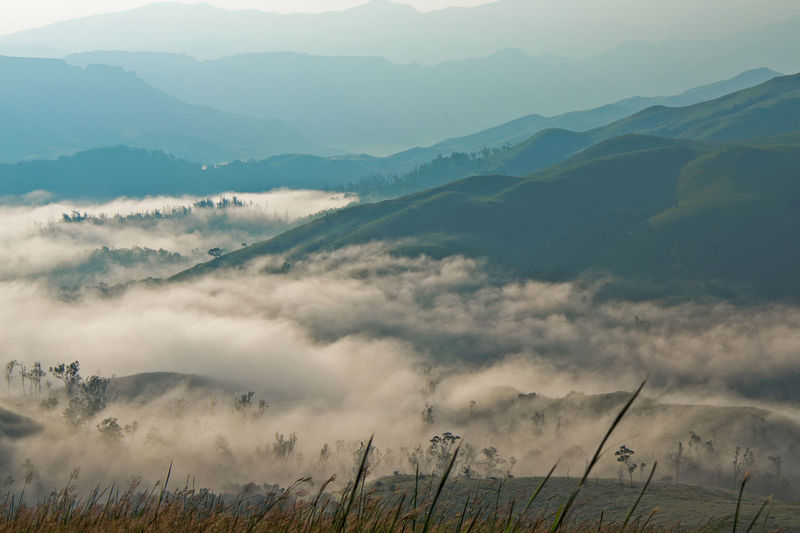 A misty morning as seen from one of the peaks in the Kudremukh Mountain Ranges of Karnataka, India. Perspectives On Nature Beauty In Nature Day Field Fog Grass Idyllic Landscape Mountain Mountain Range Nature No People Outdoors Plant Rural Scene Scenics Sky Tranquil Scene Tranquility