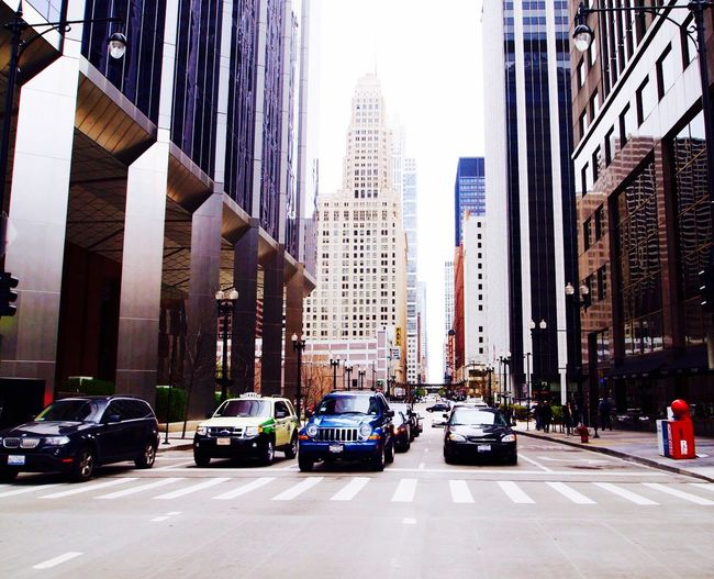 Adapted To The City City Skyscraper Architecture City Street City Life Building Exterior Traffic Street Car Modern Travel Destinations Built Structure Yellow Taxi Outdoors Cityscape Transportation Road Downtown District Urban Skyline No People
