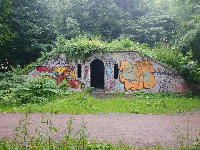 Shelter Built Structure Day Architecture Green Color Grass Outdoors No People Building Exterior Growth Tree Nature Crackhouse  Urbandecay Forgotten Places  Derilict Building Forgottenspaces Textures And Surfaces Multi Colored Urbanphotography Graffiti Spraypaint Spraypaint Art Aerosol Graffiti Wall