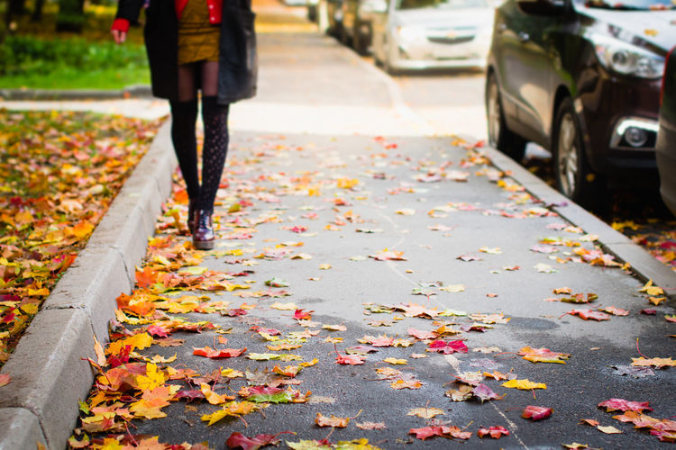 Autumn One Person Transportation Day Low Section Real People Human Leg Change Leaf Street City Footpath Focus On Foreground Leaves Falling Body Part Nature Outdoors St. Petersburg Russia Girl Woman Beautiful Walking Fashion