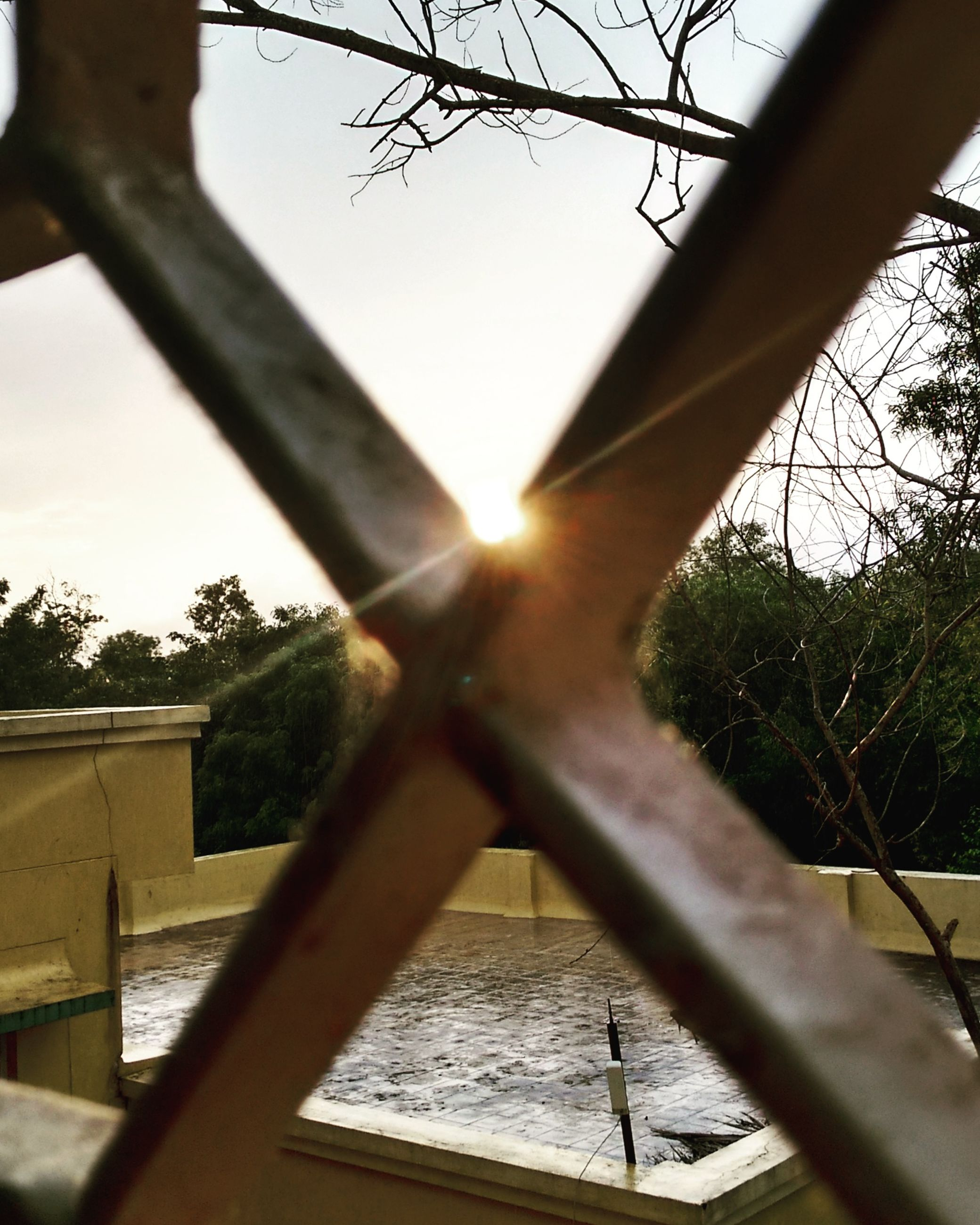 sun, tree, low angle view, built structure, sunbeam, sunlight, architecture, lens flare, branch, silhouette, sky, clear sky, sunset, indoors, connection, bridge - man made structure, no people, nature, bare tree, metal