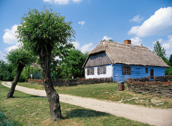 Architecture Building Exterior Built Structure Cottage Country Country Cottage Day House Hut No People Open Air Museum Pathway Poland Polen Sky Thatch Thatched Roof Thath Tree Village Way Willow Willow Tree Wooden House