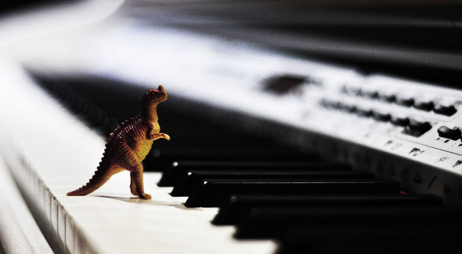 Close-up of dinosaur toy on piano