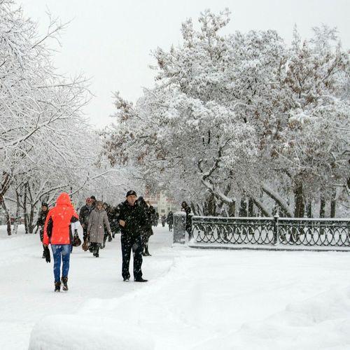 Streetphotography Snow ❄ Autumn осень Novosibirsk Siberia