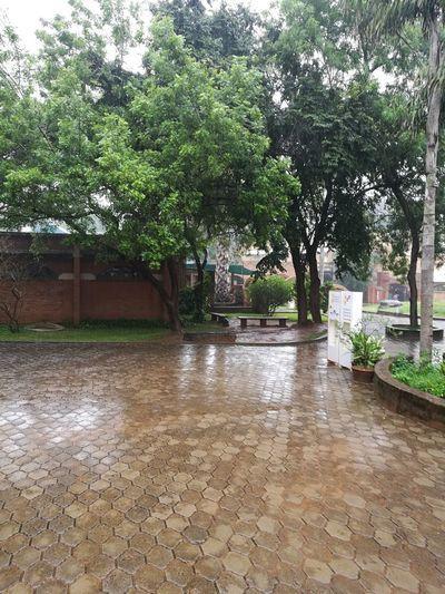 Auroville Information Centre