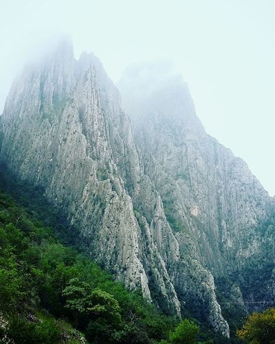Nature Beauty In Nature Growth Landscape Green Color Outdoors Day Tree Tranquil Scene Tranquility Scenics Plant Sunbeam Winter No People Close-up Agriculture Sky Freshness Lush - Description Rocky Mountains Rock Formation Mountain_collection Adventure Climbing A Mountain