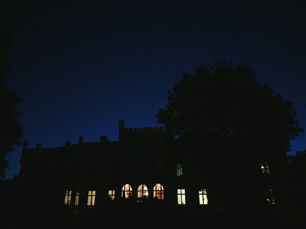 tree, silhouette, architecture, night, built structure, building exterior, low angle view, illuminated, no people, clear sky, outdoors, sky, blue, city, nature