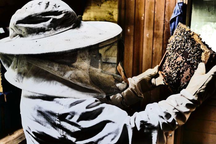 Imkerin Bienen Bei Der Arbeit Bienen  Imkerin Honig Honigbiene Honig Bienen Biene Bienenwaabe Bienenwabe Schwarzgelb