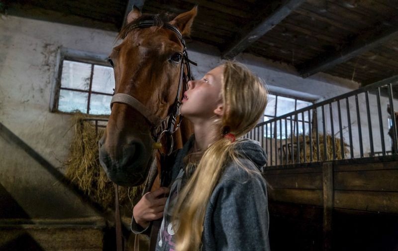 Side view of teenage girl standing by horse in stable