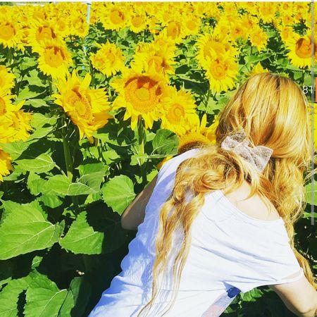Yellow Flower Hello World Happyday That's Me Taking Photos Instalove Enjoying Life Instalike Photography Happy People Just Smile  Photo♡
