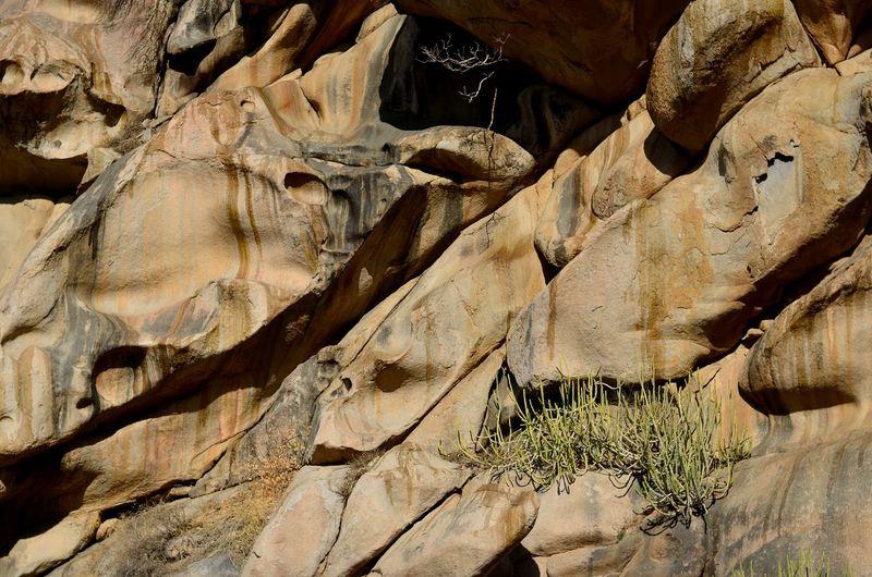 Full frame shot of rocky wall