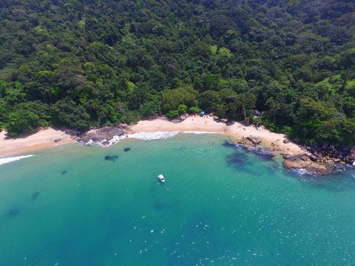 Flying High Nature Water Beauty In Nature Tranquil Scene Ubatuba Beach  Brazil