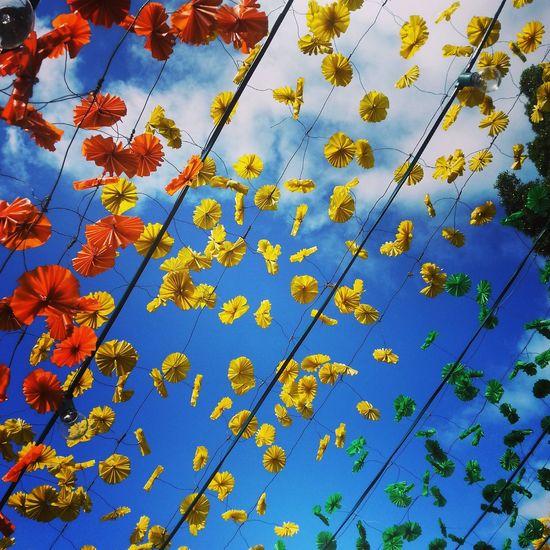 Pattern Pieces Hello World ✌ Flowers Colorful Green Yellow Red Sky Pattern Photoart Eye4photography  EyeEm Best Shots EyeEm