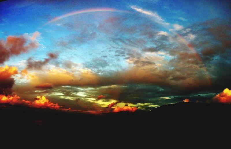 bonin Rainbow