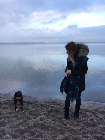 Ostsee mit Wilma Dog Pets One Animal Sea Sky Cloud - Sky Horizon Over Water Water Nature Beach