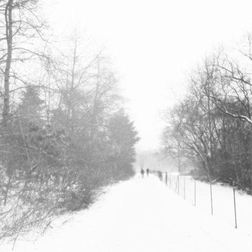 More white stuff Blackandwhite Winter Wonderland Get Lost