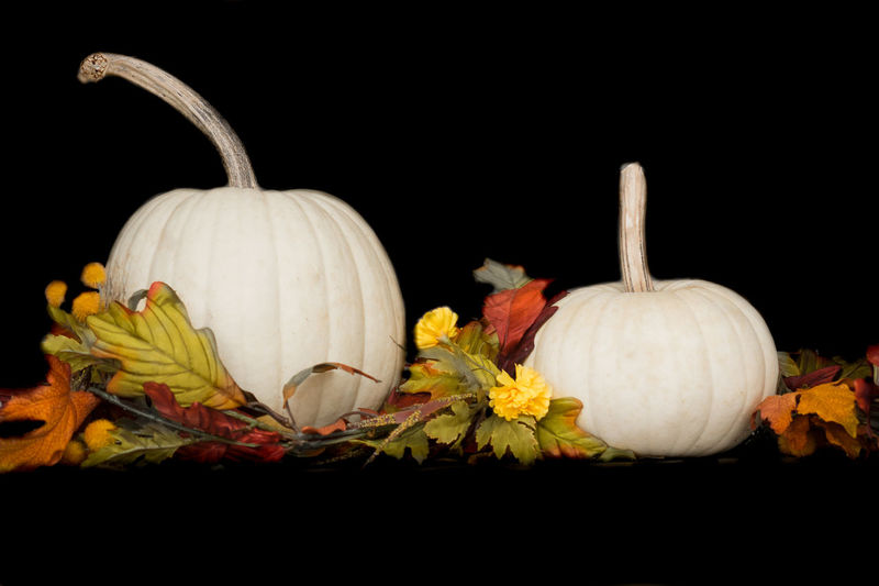 Pumpkin Studio Shot Food Black Background Food And Drink Vegetable Freshness No People Still Life Close-up Healthy Eating Cut Out