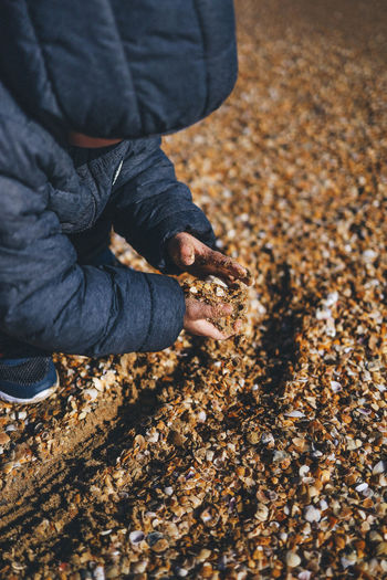 Low section of child playing on seashells