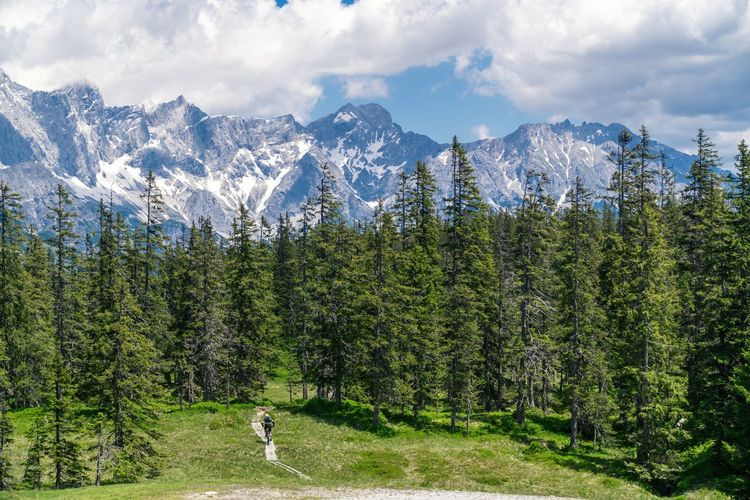 Rear view of man riding a mountain bike on wooden footpath in the alps.