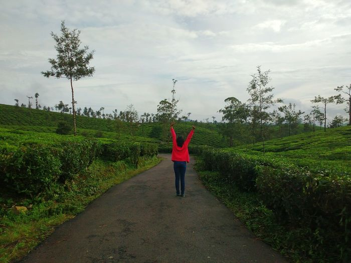 Freedom Freedom Pink Green Tea Plantation  Tea One Person Pink And Green Road Journey Nature Freshness Beauty In Nature Green Color View Neon Life Been There. Done That.