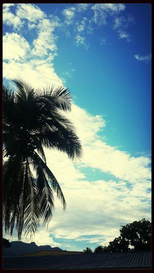Honduras Blue Skies