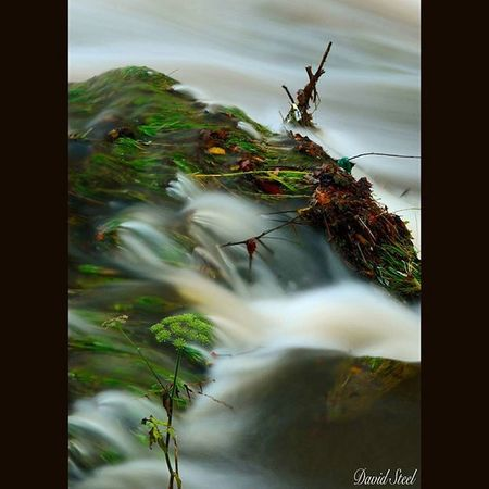 """River Carron again in full flow. ISO 100. f22 25""""sec. Princely_shotz Ig_captures Ig_shutterbugs Igbest_shots Insta_Scotland Loves_Scotland Ig_shots_magic Master_shots Majestic_earth Special_shots Landscape_lovers Ic_water Ig_bliss Britains_talent Nature_shooters Nature_best Britains_talent Nature_best_shots Nikon_photography Ig_Scotland Waterfall Nikond7000"""