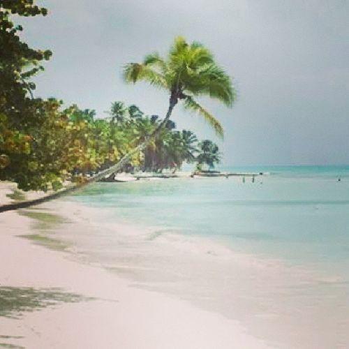 Caribbean Life Is A Beach Saona Island Paradise ❤