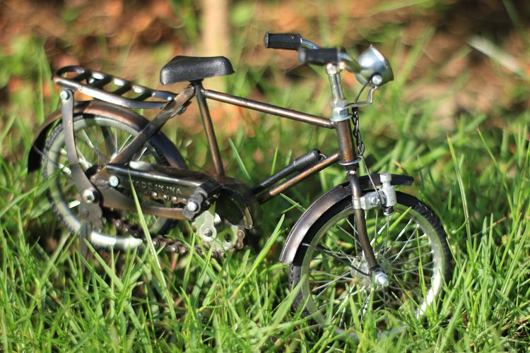 Aceh Transportation Grass Mode Of Transportation Plant Land Vehicle Field Land No People Bicycle Day Stationary Nature Green Color Metal Selective Focus Focus On Foreground Outdoors Close-up Wheel Growth
