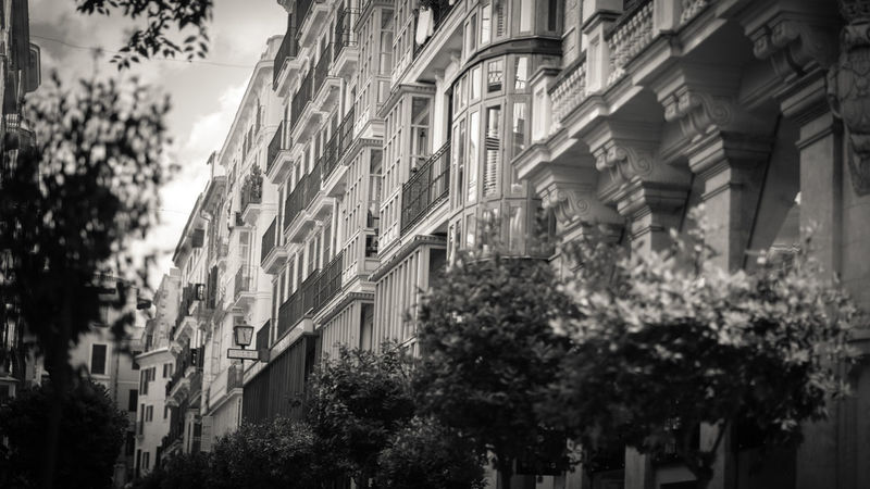 Architecture Black And White Building Exterior Built Structure City Façade Low Angle View No People Outdoors Palma De Mallorca SPAIN Tree
