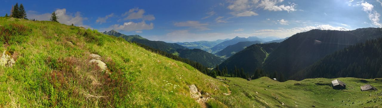 Panorama Panoramic Alps Beauty In Nature Cloud - Sky Day Environment French Alps Grass Green Color Land Landscape Mountain Mountain Range Nature No People Non-urban Scene Outdoors Panoramic Plant Scenics - Nature Sky Tranquil Scene Tranquility Tree