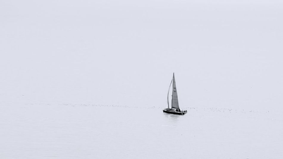 Boat English Channel No People Sail Sail Away, Sail Away Sail Boat Sailing Sea Water Yacht Yachting Breathing Space Go Higher