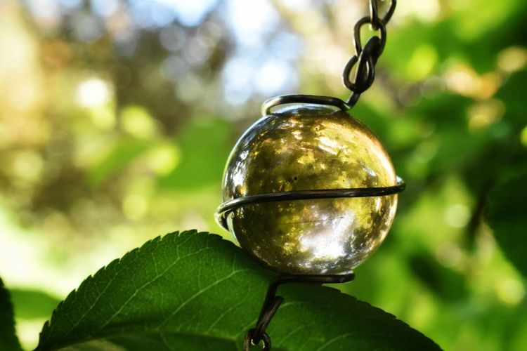 pretty Marble Ball Glass Round Orb Springtime Sunlight Greenery Macro Plant Life Twig Leaves Bokeh Sun Shadows & Lights Reflection Tree Leaf Hanging Branch Close-up Green Color Glass - Material Springtime Decadence The Creative - 2019 EyeEm Awards