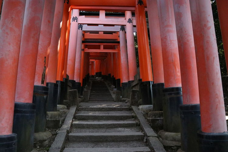Hushimiinari 伏見稲荷大社 伏見稲荷 千本鳥居 鳥居 Shrine 神社 Steps And Staircases Steps Staircase Architecture Built Structure Spirituality Religion No People