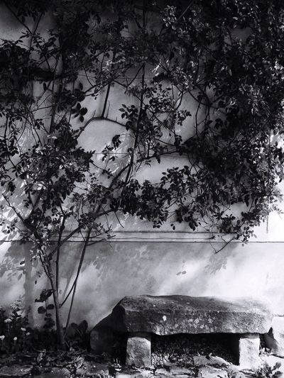 Mur, banc en pierre, noir et blanc, wall, black & white, Nature , Outdoors No People Beauty In Nature Nature