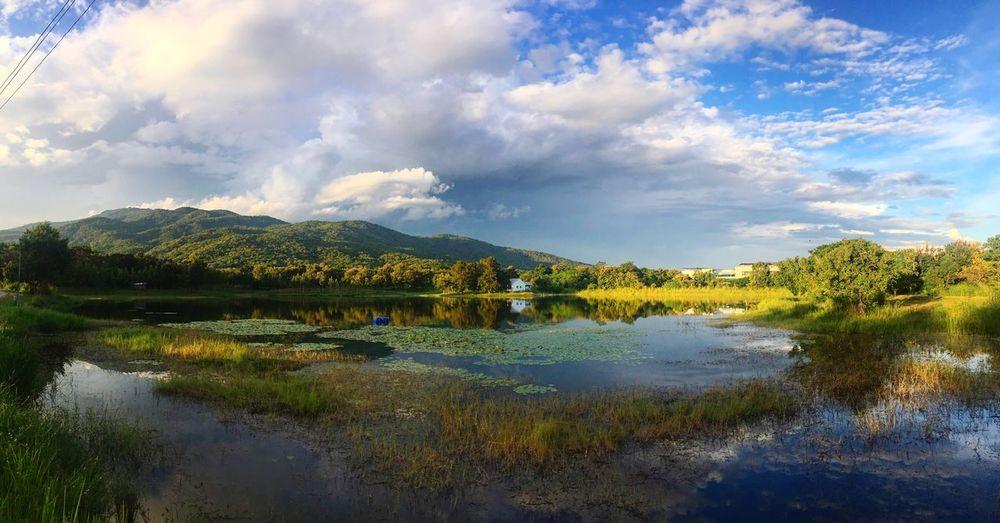 Nice winter in chiangmai Water Cloud - Sky Sky Plant Beauty In Nature Lake Tree Mountain