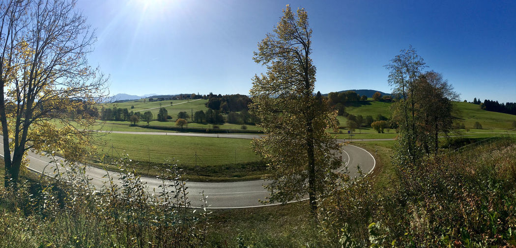 Panorama of local road with sunlight and lens flare on low mountain background in Germany Curve Panaroma Road Transportation Beauty In Nature Day Environment Field Green Color Land Lens Flare Mountain Nature No People Plant Scenics - Nature Sky Speed Sun Sunlight Tranquil Scene Tree