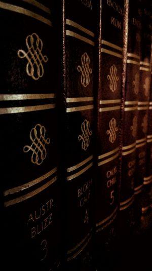 Books on a Shelf Relaxing Bookshelf Books Encyclopedias All In A Row Dark Antiques Break The Mold