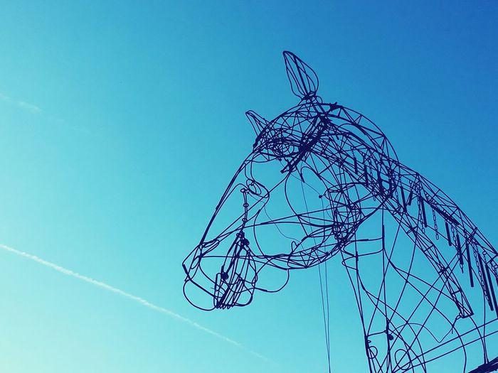 Horse Cheval Ciel Sky